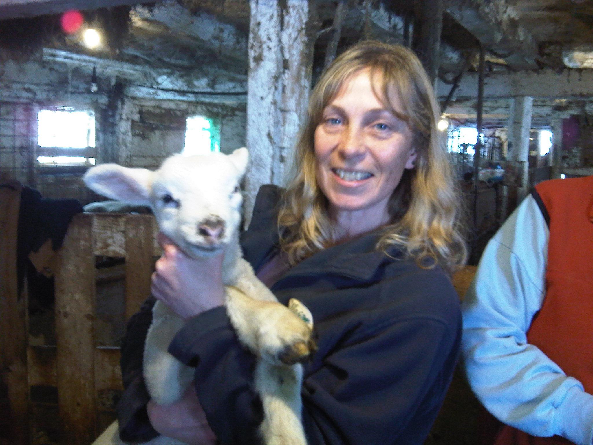 Lambing Clinic